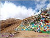 2014 世界屋脊 : 西藏 @ 塞外江南 ~ 林芝:PA153988.jpg