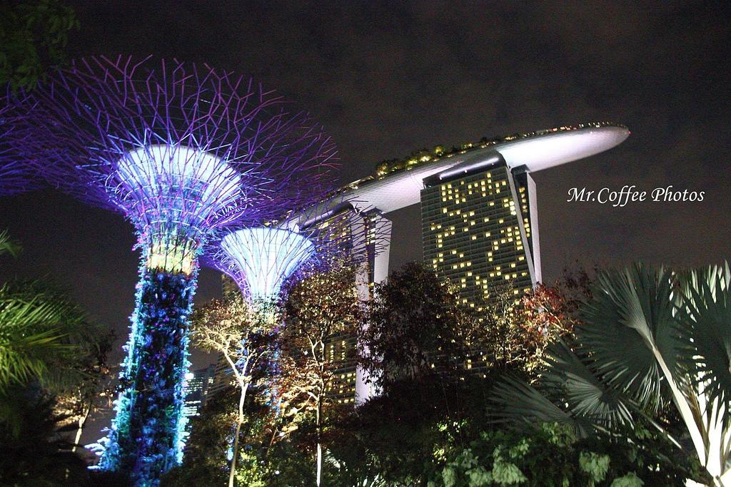 IMG_3569.JPG - 12.花園夜色