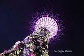 12.花園夜色:IMG_3543.JPG