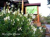 07.02.10【南投】《牛耳藝術渡假村》:IMG_2700.JPG