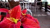 07.02.10【南投】《牛耳藝術渡假村》:IMG_2707.JPG