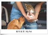 部落格導覽:2寵物當家.jpg