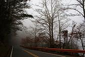 11.02.23【中橫】台灣最美的公路:現在才下午兩三點喔,因為霧太濃,看起來像天快黑了