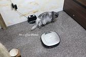 LG WiFi 濕拖清潔機器人:IMG_4397.JPG