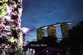 12.花園夜色:IMG_3539.JPG