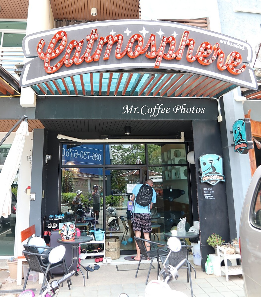 IMG_3445.JPG - D17清邁 3貓咖啡 Catmosphere Cat Café