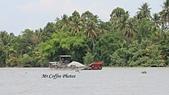 D11胡志明 3湄公河 鳳凰島:IMG_0518.JPG