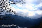 11.02.23【中橫】台灣最美的公路:一路往山上開,穿過雲層,視線就清楚了