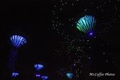 12.花園夜色:IMG_3554.JPG