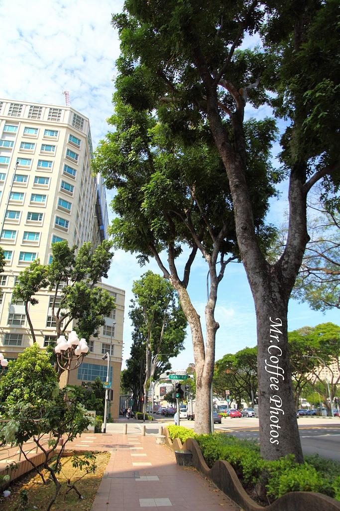 IMG_2945.JPG - 02 紅點藝術館,綠化城市