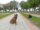 21-03-22~24 二崙公園、東遠米廠,口湖台灣鯛:IMG_20210323_095702.jpg