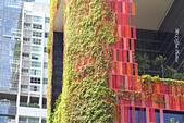 02 紅點藝術館,綠化城市:IMG_2965.JPG