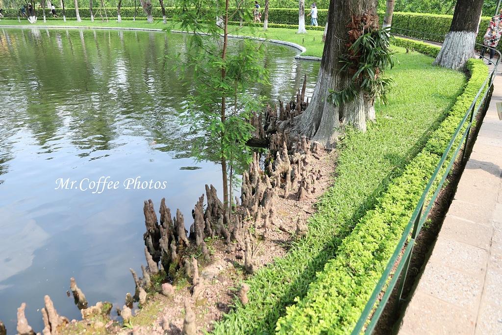 IMG_6409.JPG - D2河內 5胡志明故居,一柱寺