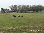 21-03-22~24 二崙公園、東遠米廠,口湖台灣鯛:IMG_20210323_095545.jpg