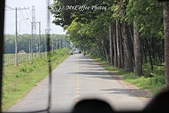D11胡志明 3湄公河 鳳凰島:IMG_0480.JPG