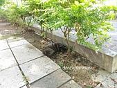 21-05-03~05 岡山之眼、台糖橋頭文化園區:IMG_20210504_080603.jpg
