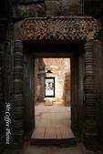 D14暹粒 5塔布隆寺-樹中廟、猴子與咖啡:IMG_2453.JPG