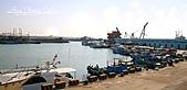 07.05.08【桃園】《竹圍魚港》:IMG_0004-2.JPG