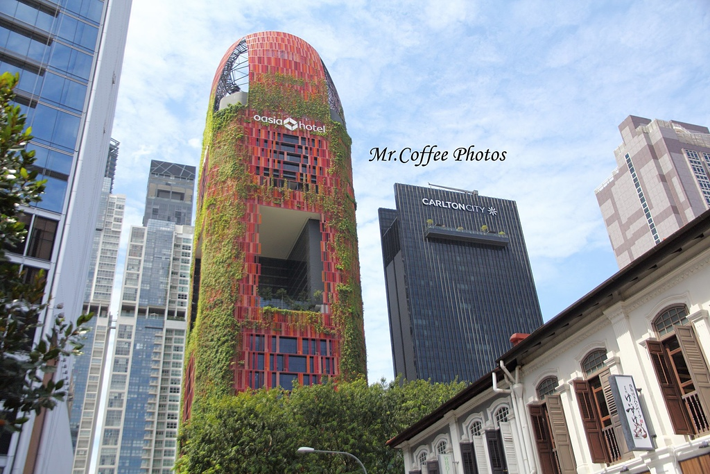 IMG_2966.JPG - 02 紅點藝術館,綠化城市