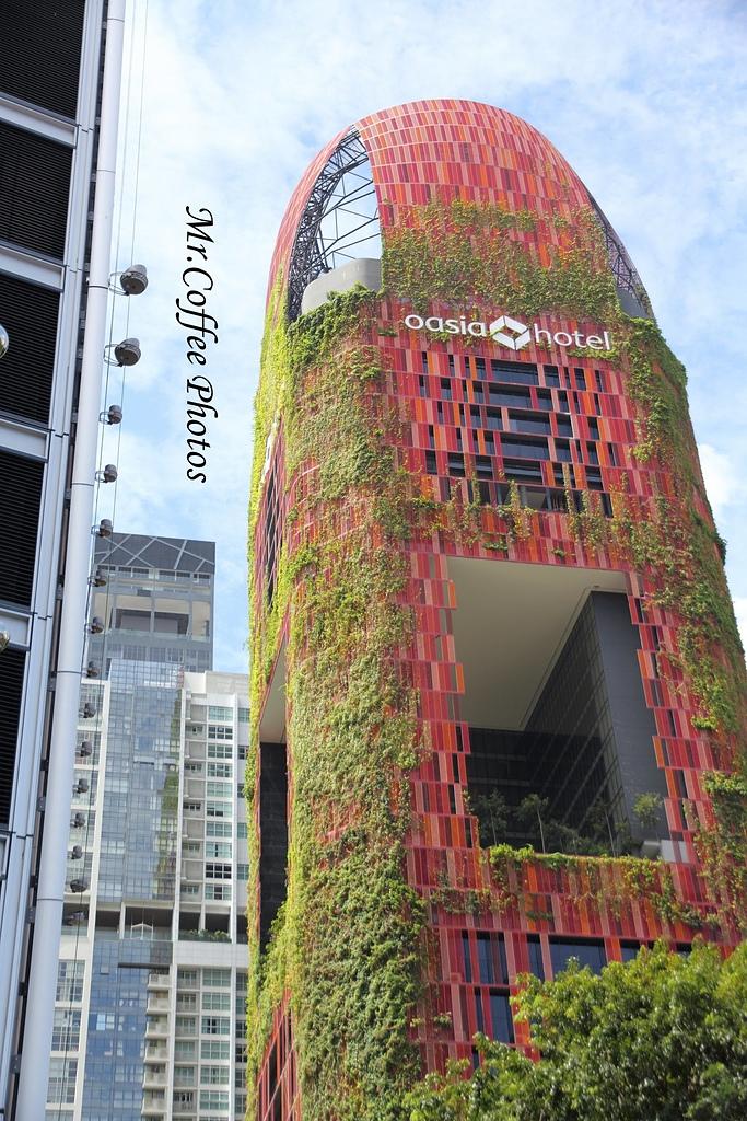 IMG_2964.JPG - 02 紅點藝術館,綠化城市