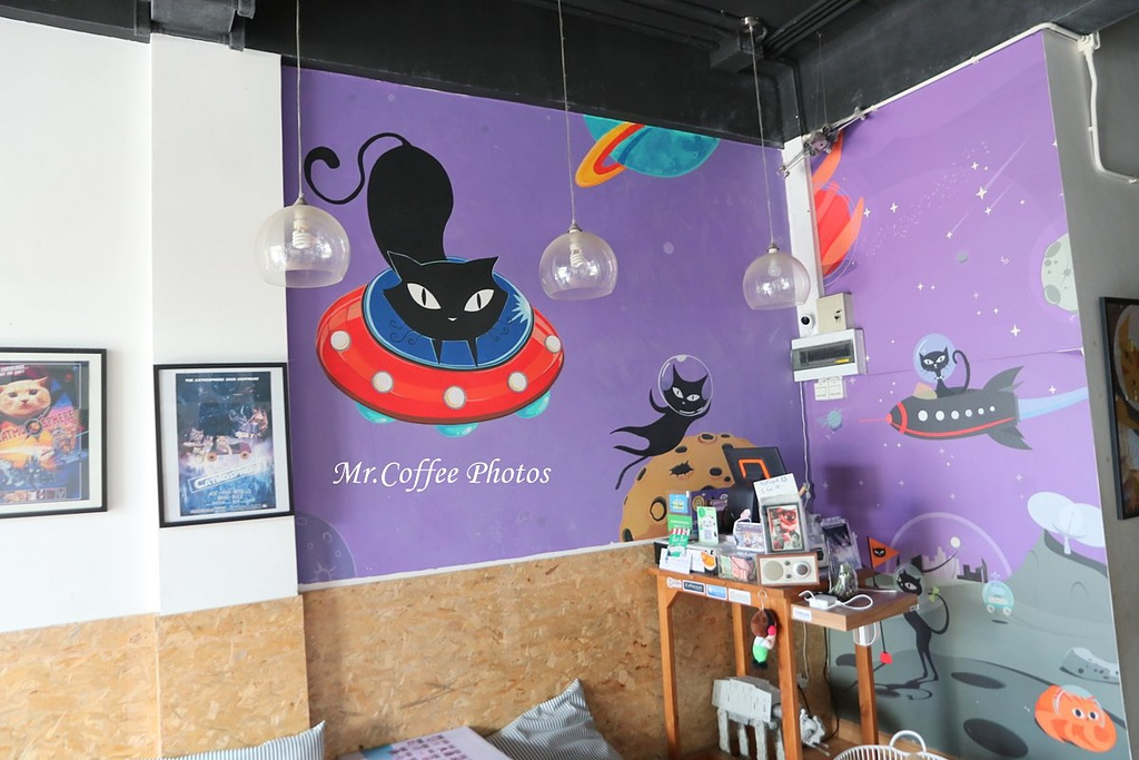 IMG_3255.JPG - D17清邁 3貓咖啡 Catmosphere Cat Café