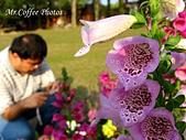 07.02.10【南投】《牛耳藝術渡假村》:IMG_2614.JPG