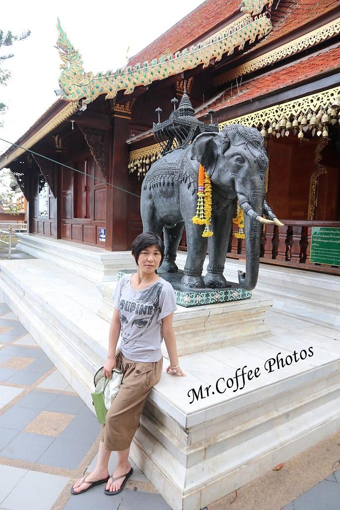 IMG_3530.JPG - D17清邁 4双龙寺