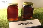 12.08.29【雲林。古坑】蜜蜂故事館:IMG_0359.JPG