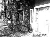 07.02.10【南投】《牛耳藝術渡假村》:IMG_2619.JPG