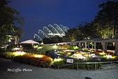 12.花園夜色:IMG_3535.JPG