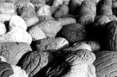07.02.10【南投】《牛耳藝術渡假村》:IMG_2620.JPG