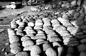 07.02.10【南投】《牛耳藝術渡假村》:IMG_2621.JPG