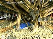 07.02.10【南投】《牛耳藝術渡假村》:IMG_2624.JPG