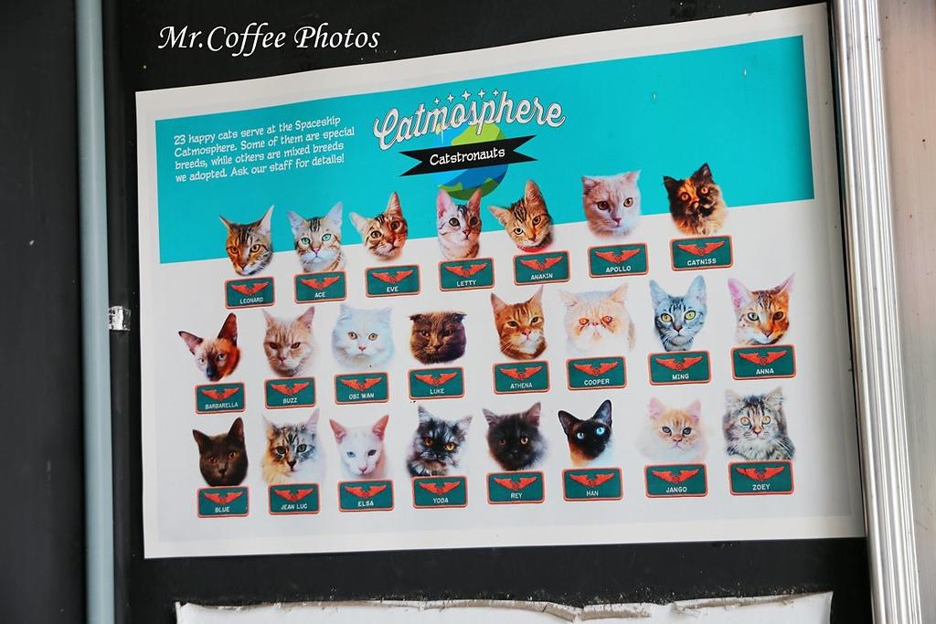 IMG_20180524_224135.JPG - D17清邁 3貓咖啡 Catmosphere Cat Café