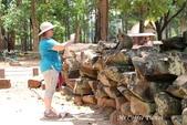 D14暹粒 5塔布隆寺-樹中廟、猴子與咖啡:IMG_2148.JPG