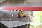 03.12-4.緬甸廟:IMG_9909.jpg