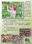 09.08.27 關於咖啡:05.採收.jpg