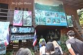 D18清邁 1叢林飛索 Jungle Flight Chiang Mai:IMG_3840.JPG