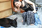 07.05.10【新竹】《內灣車站》:熟睡的小黑狗