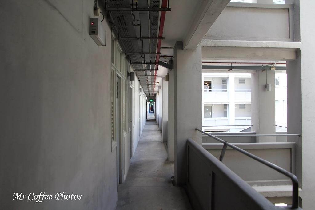 IMG_2991.JPG - 02 紅點藝術館,綠化城市