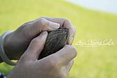 09.10.29【宜蘭】《親水公園》:乾掉的海檬果