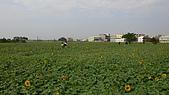 2008嘉義市花海節:L1100072.JPG