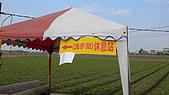 2008嘉義市花海節:L1100129.JPG