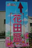 2008嘉義市花海節:P1020162.JPG