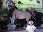 Cute Niece:1136006445.jpg