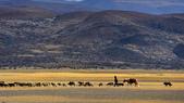 20120512~27西藏阿里深度16日遊:DSC_2576.jpg