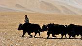 20120512~27西藏阿里深度16日遊:DSC_1973.jpg