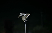 短耳鴞 Short-eared Owl:A23P8080.jpg