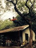 20141130爬樹:S__32432206.jpg