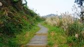 1051118五分山步道:DSC08649.jpg